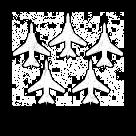 Image of Air Patrol