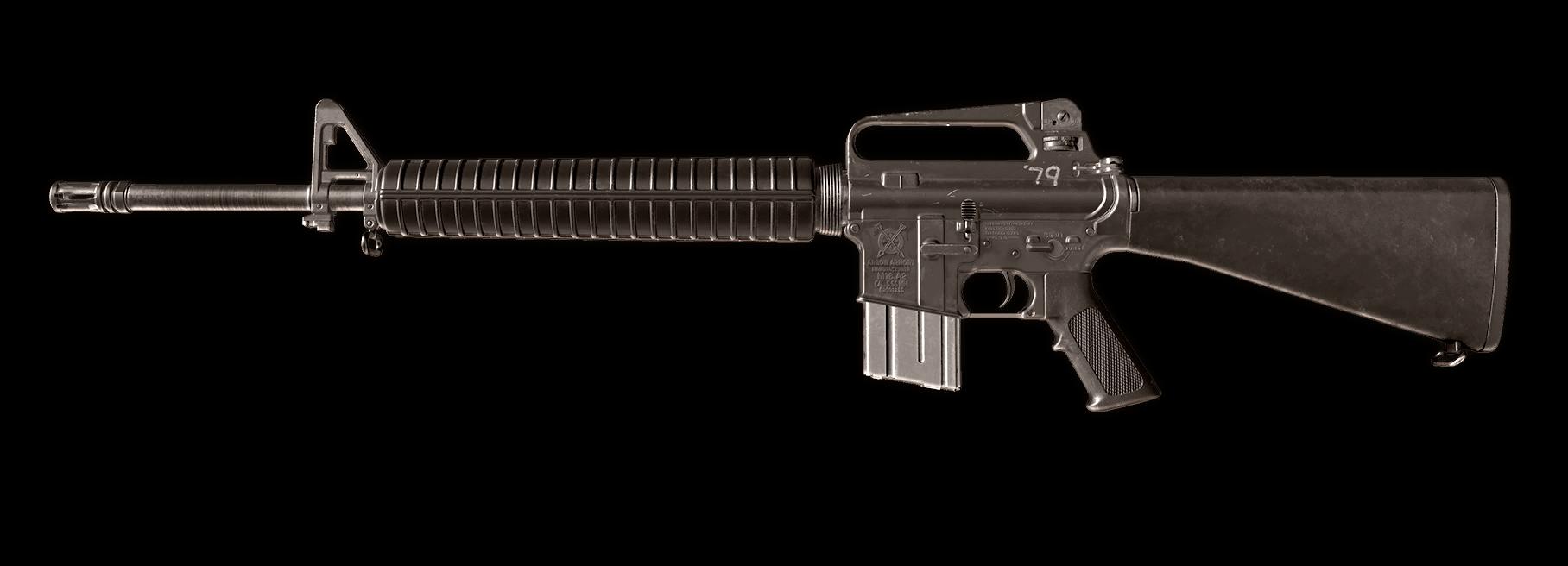 M16 Image