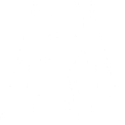 Fault Line Icon