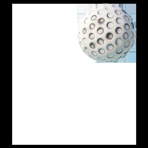 Golf Ball Skin fortnite store